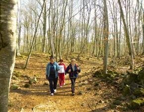 Tres sortides d'un dia a parcs naturals de Catalunya