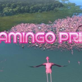Flamingo Pride, el dia de l'orgull dels flamencs