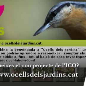 """Participa en el projecte """"Ocells dels jardins"""""""
