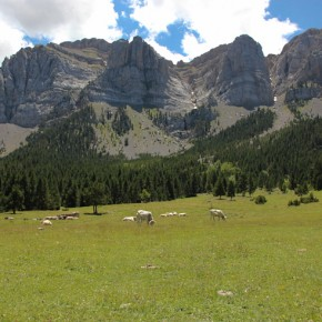 Descobrint el Baridà (I) Una escapada de dos dies entre l'Alt Urgell i la Cerdanya